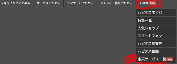 hapitas_rakuten_kouryaku_shoukai18